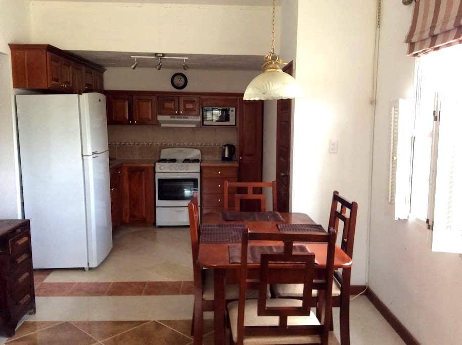 Watson Rental. Private one bedroom apartment. - Belmopan - Apartment