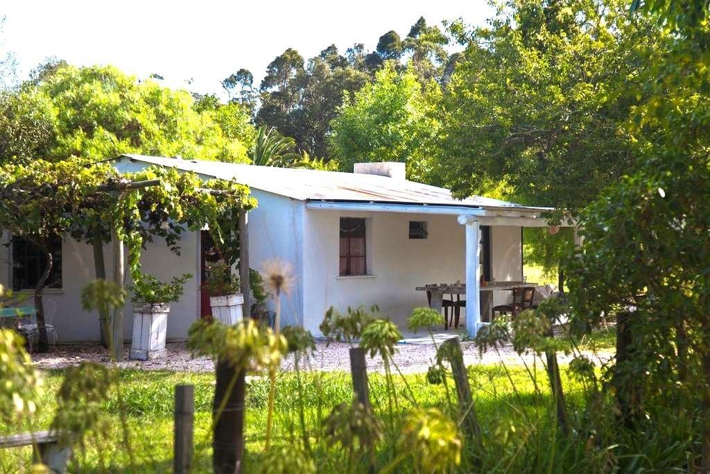 La Garzonita - Garzón - Dům