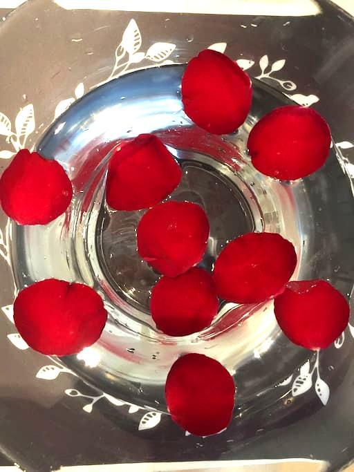 《慢媛的家》之南城美境,在喧闹城市中,一盏清水几瓣玫瑰,家就是市井生活 - 南京市
