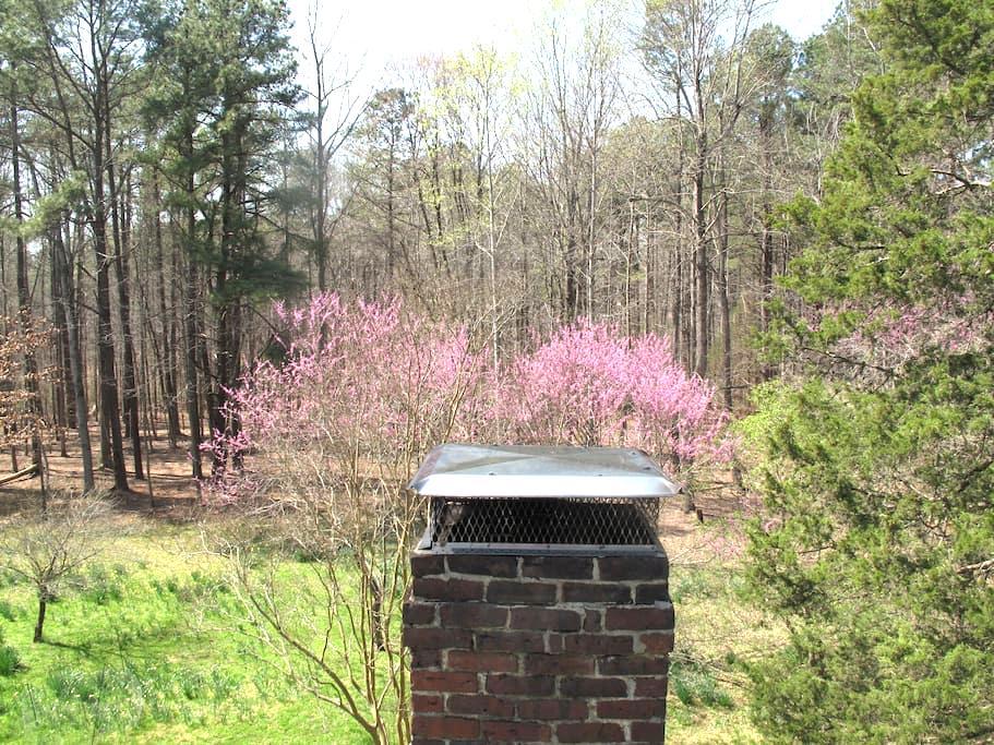 Hidden Acres - Chapel Hill