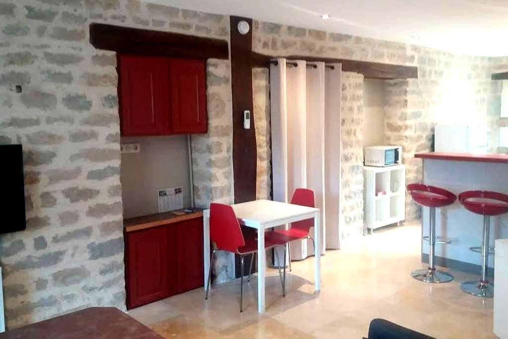 Appartement 48 m² proche gare et centre ville - Dijon - Huoneisto