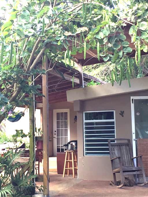 Quaint and Peaceful Room - Manatí - บ้าน