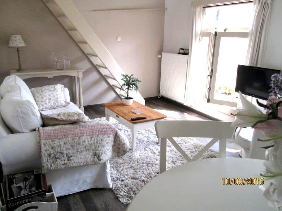 Licht duplex appartement - Antwerpen - Apartment