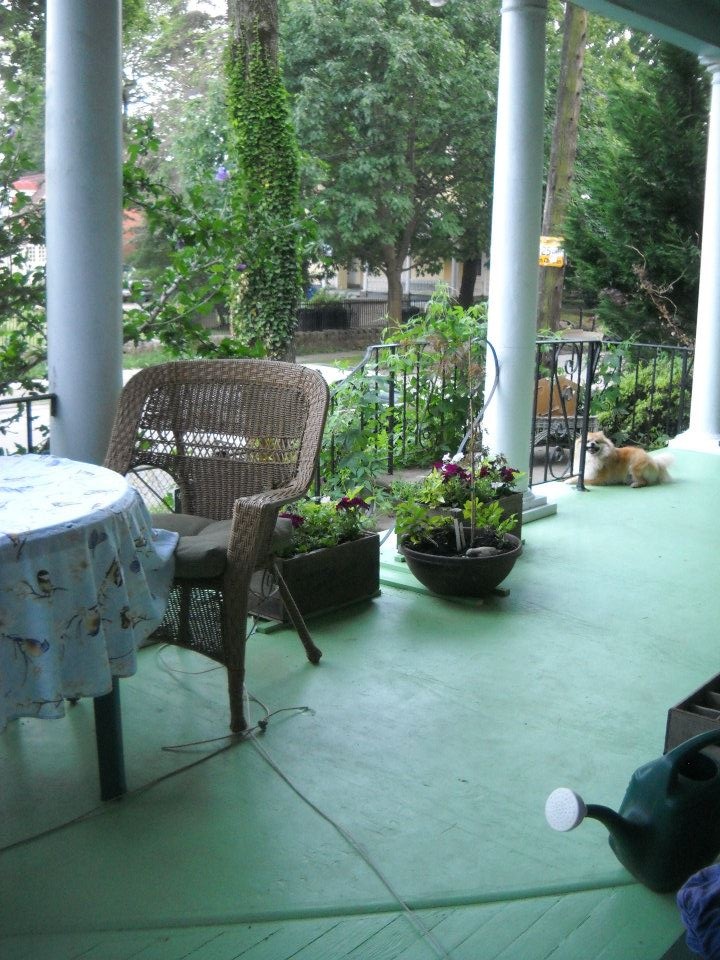 The front porch (with Foxy)