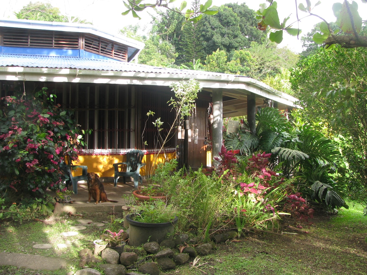 Tropical Lodge in Tranquil Garden