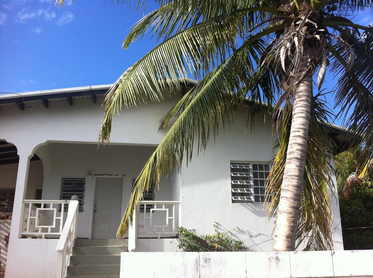 Modest seaview near Basseterre