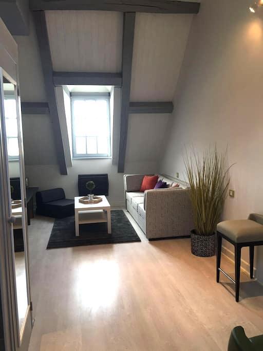 Studio vue sur la Loire à 200m du Chateau - Amboise