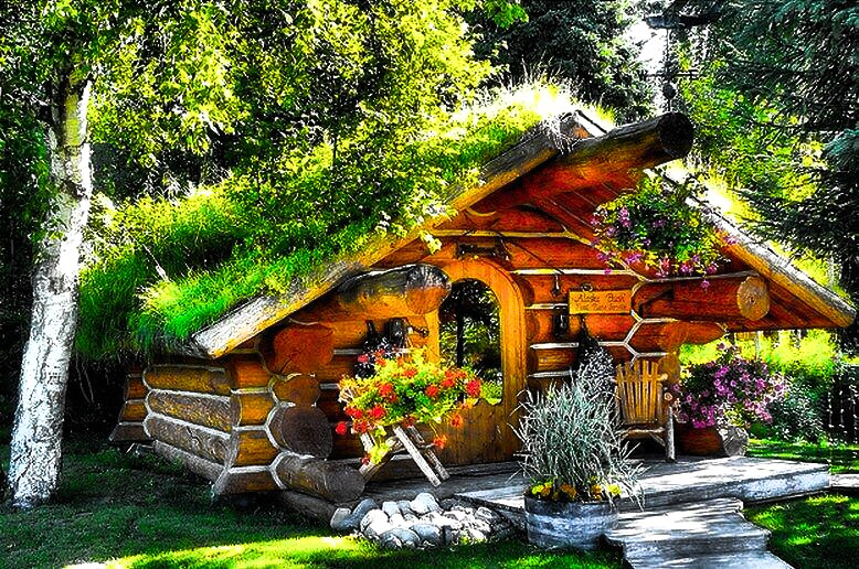 The Hobbit Cabin , Cozy And Unique   Cabins For Rent In Talkeetna, Alaska,  United States