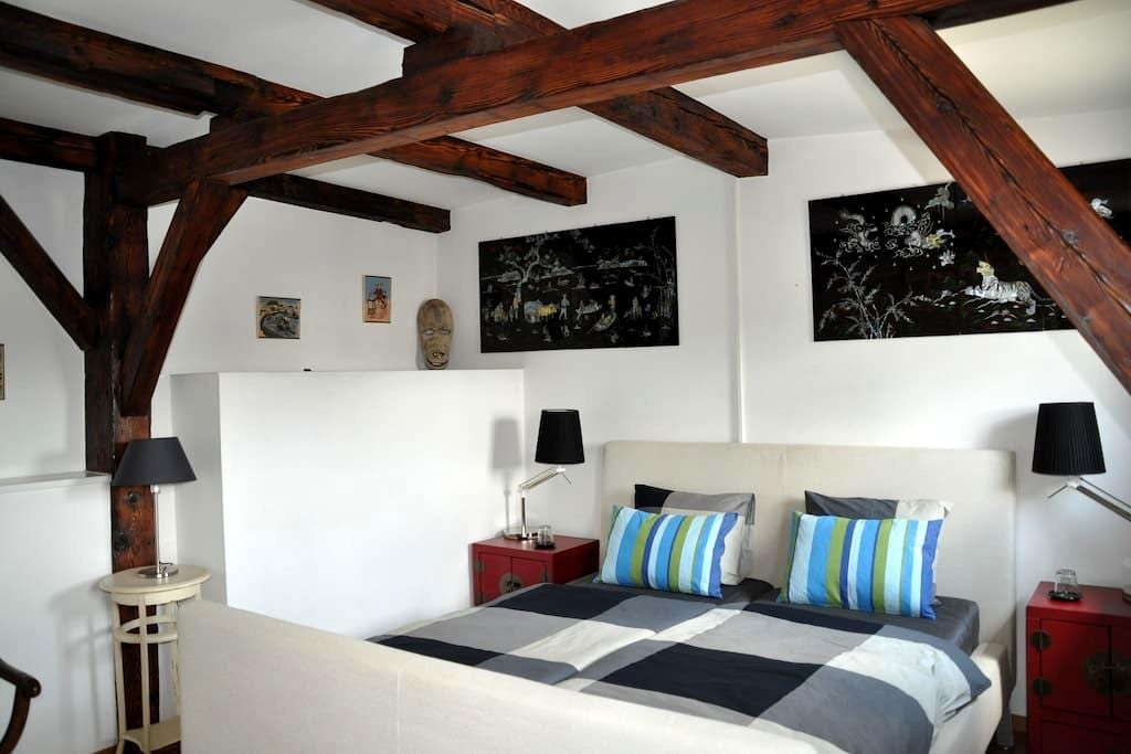 Bright room in duplex penthouse - Genebra - Apartamento