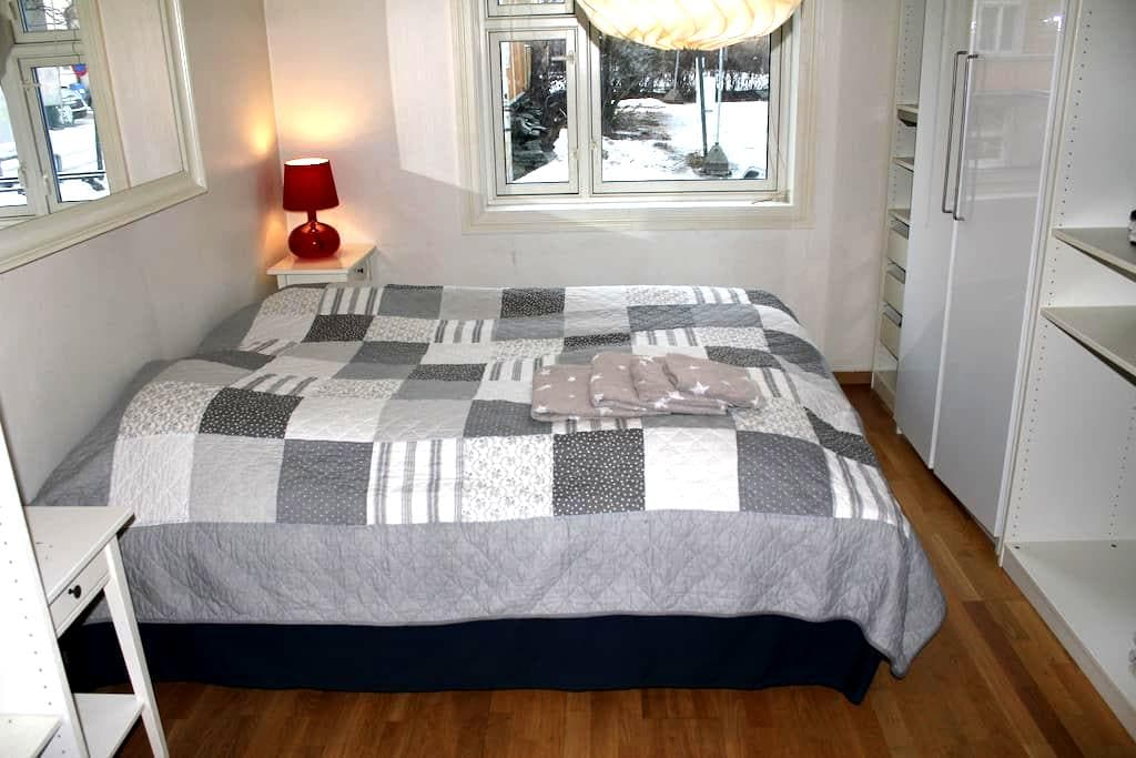 Trondheim centre king size bed - Trondheim - Appartement