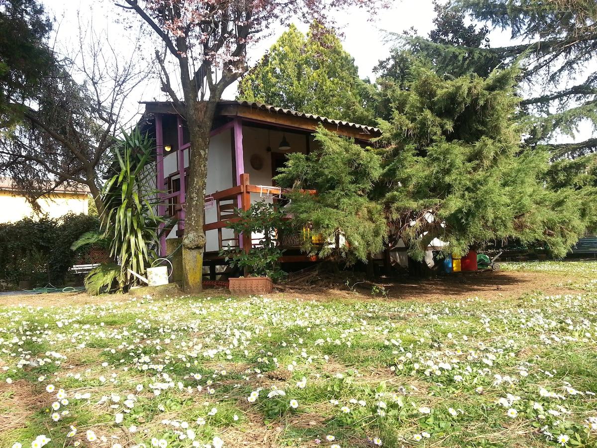 """""""Il cottage di Mariuccio"""""""