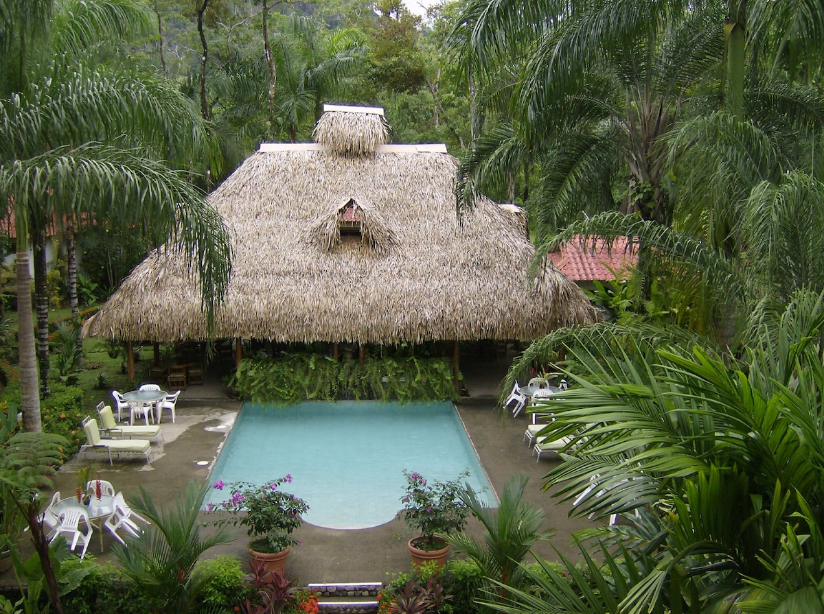 La Palapa B. - WHERE TOUCANS NEST