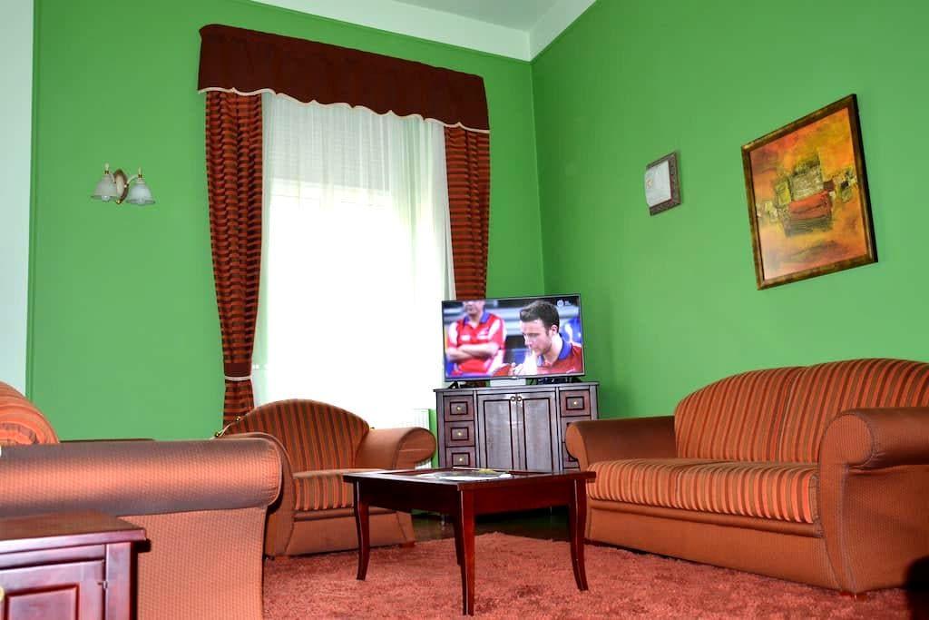 Tágas lakás Szombathely centrumban - Szombathely - Daire