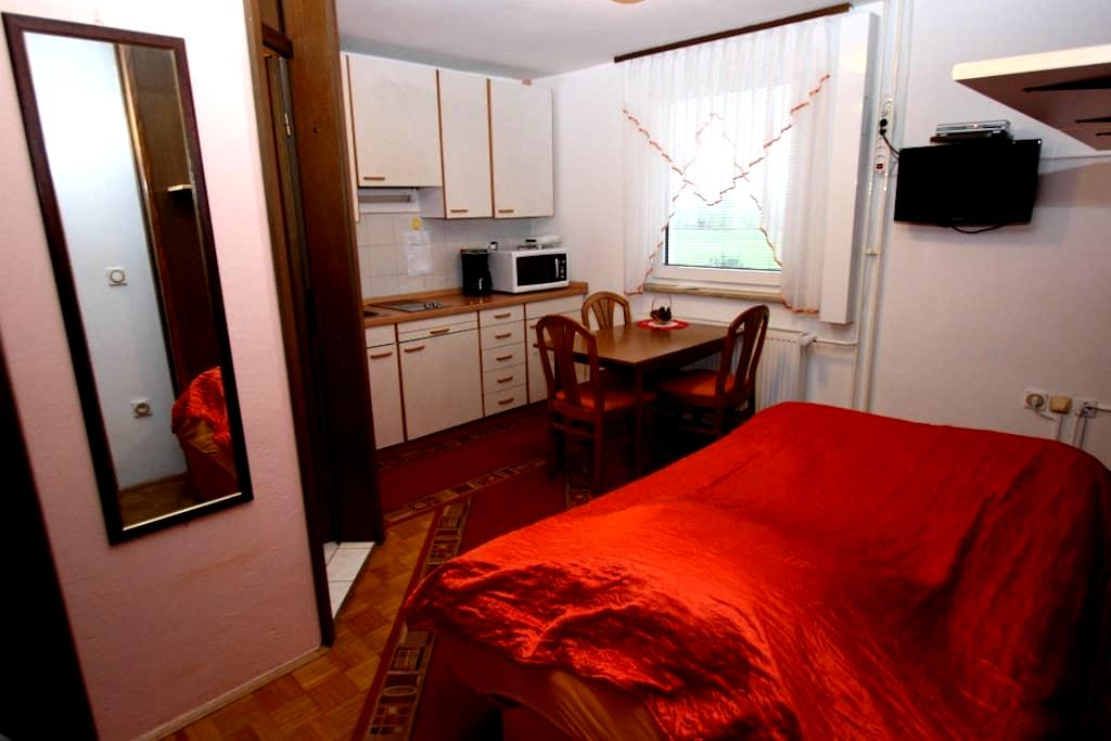 Apartment for 2 to 4 person - Cerklje na Gorenjskem - Leilighet
