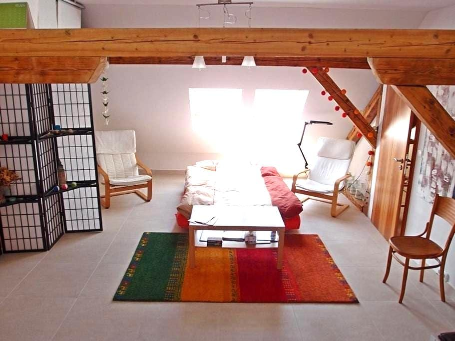 Buddha lounge - very center of Brno - Brno - Loft