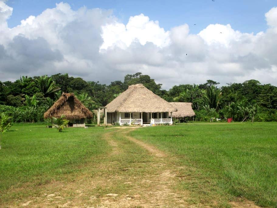 Winding Creek Farm & Guest Lodge - Punta Gorda