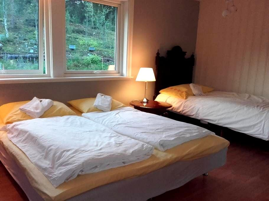 Haus im Wald-4 bed's room-GEILO - Hol - Hus