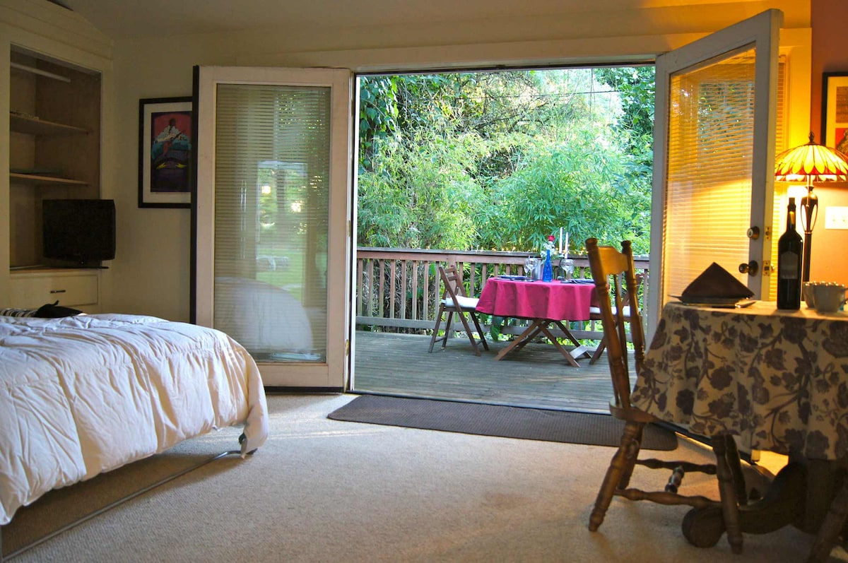 This view of the deck is through the French doors.
