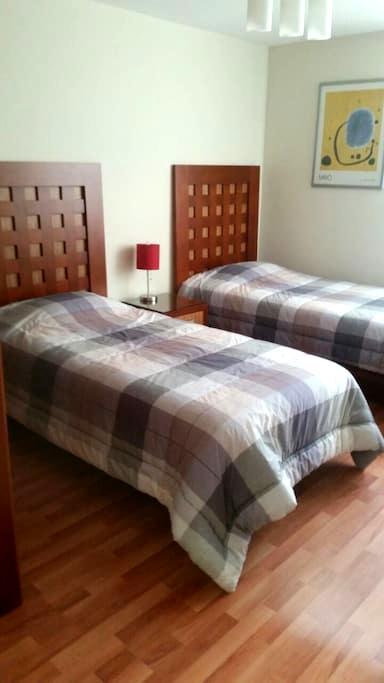 Beautiful Room in the Centro Histórico - San Luis Potosí - Apartment