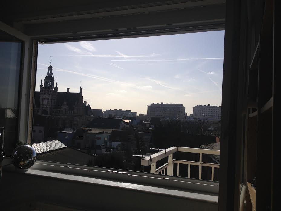 view from the Blue Room