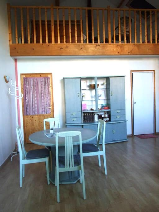 Beau studio avec mezzanine près de Fontainebleau - La Genevraye - House