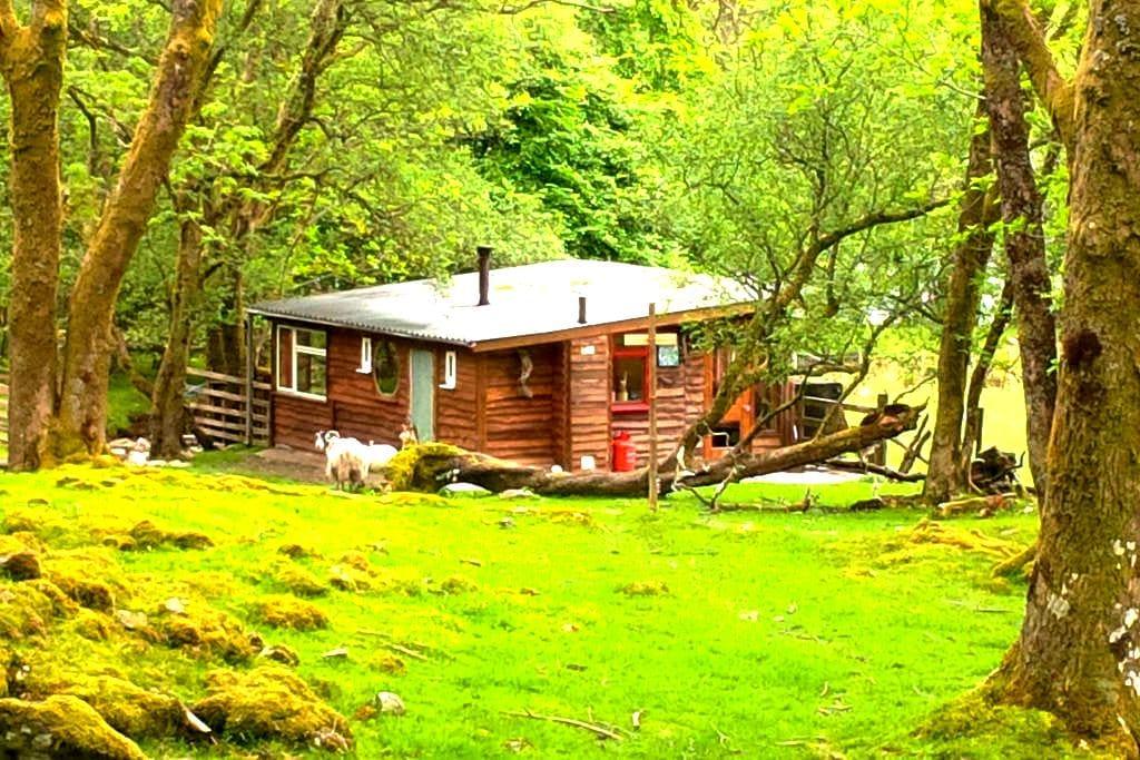 Outer Space Scottish Highland cabin - Balquhidder