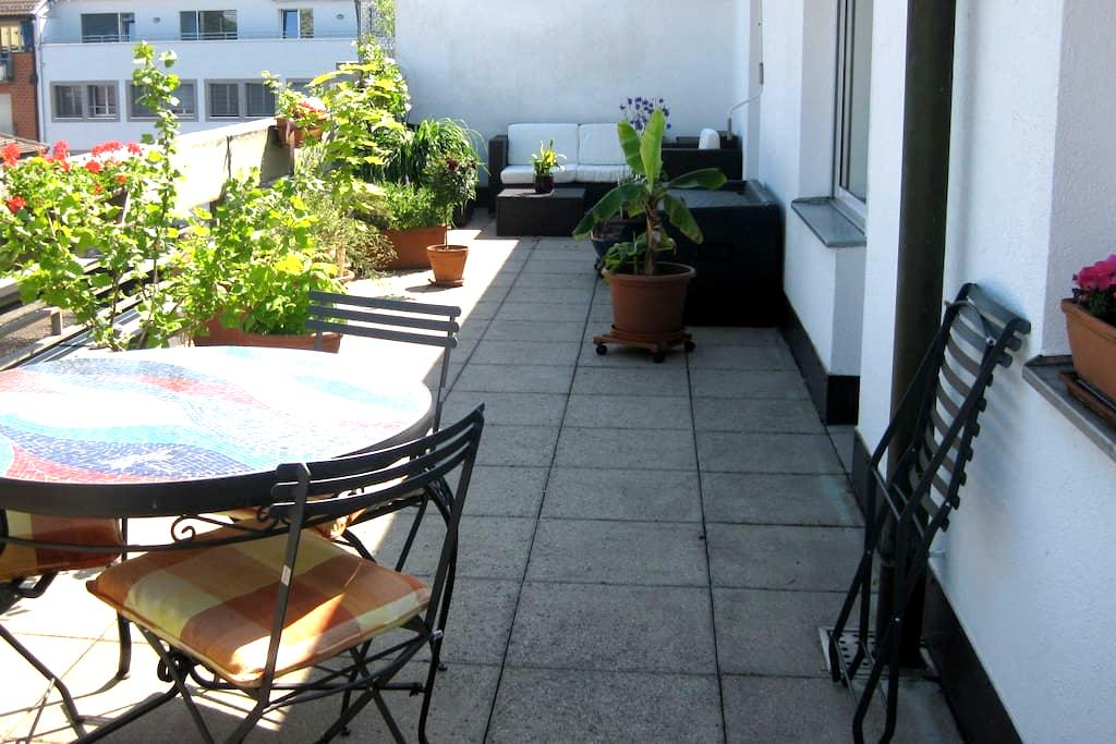 Penthouse room with private balcony - Basel - Flat