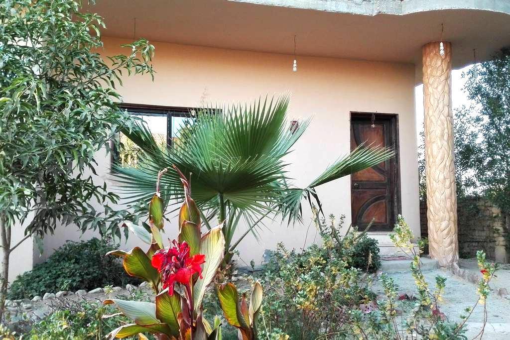 Villa Elhag - Luxor - Villa