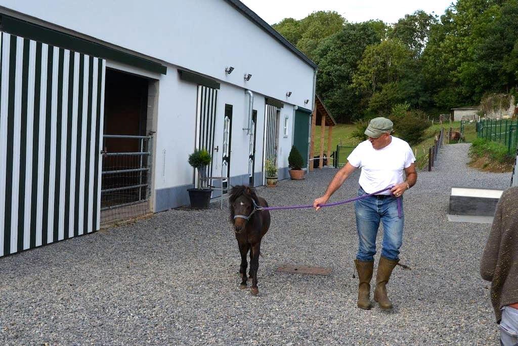 XHAWIRS HORSE FARM - Herve