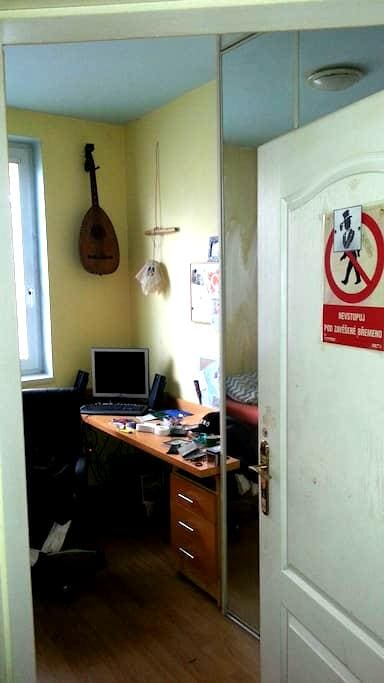 Mini room for 1 person or 2 lovers  - Praha - Appartement
