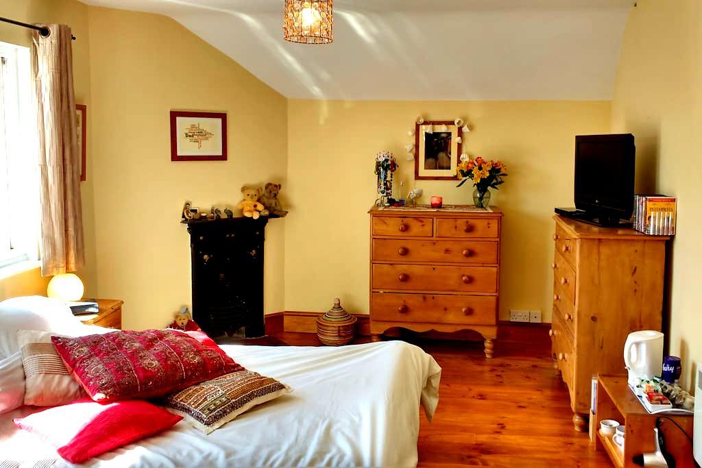 Spacious double room with en-suite. - Hambridge - Bed & Breakfast