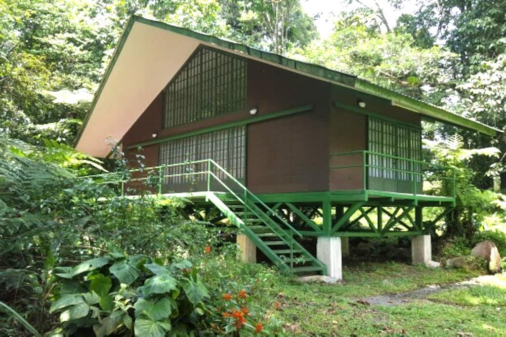 Jungle Cottage - Guapiles - Jiménez - Шале