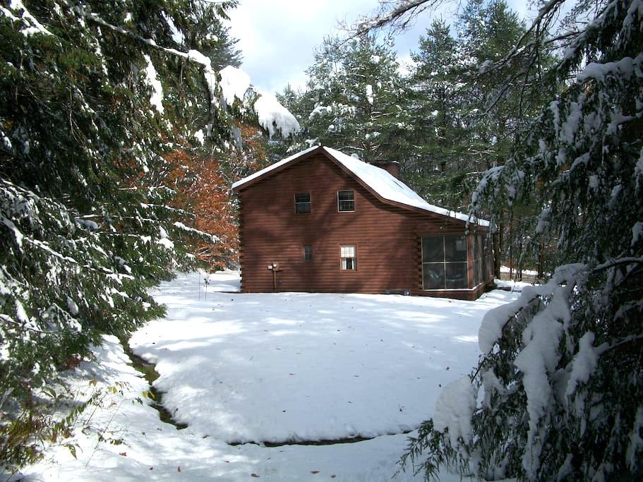 Cozy & private log cabin on 6 acres - Jamaica - Ház
