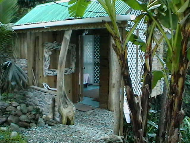 Wings, A Rain Forest Experience