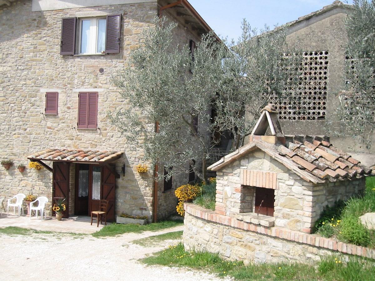 Scoprire Assisi e l'Umbria