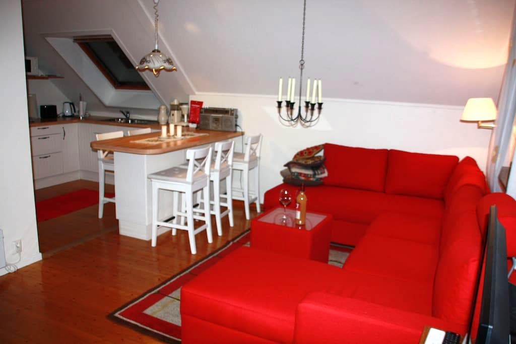 Cosy apartment in central Voss - Voss - Apartemen