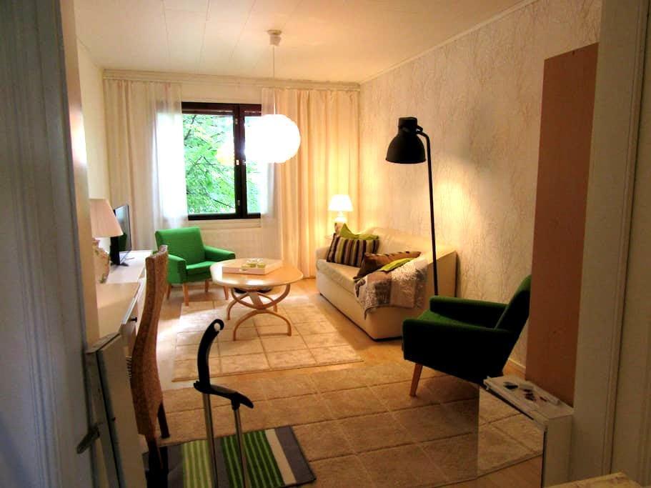 Cosy 2 rooms apartment in Kuopio, Finland - Kuopio - Appartement