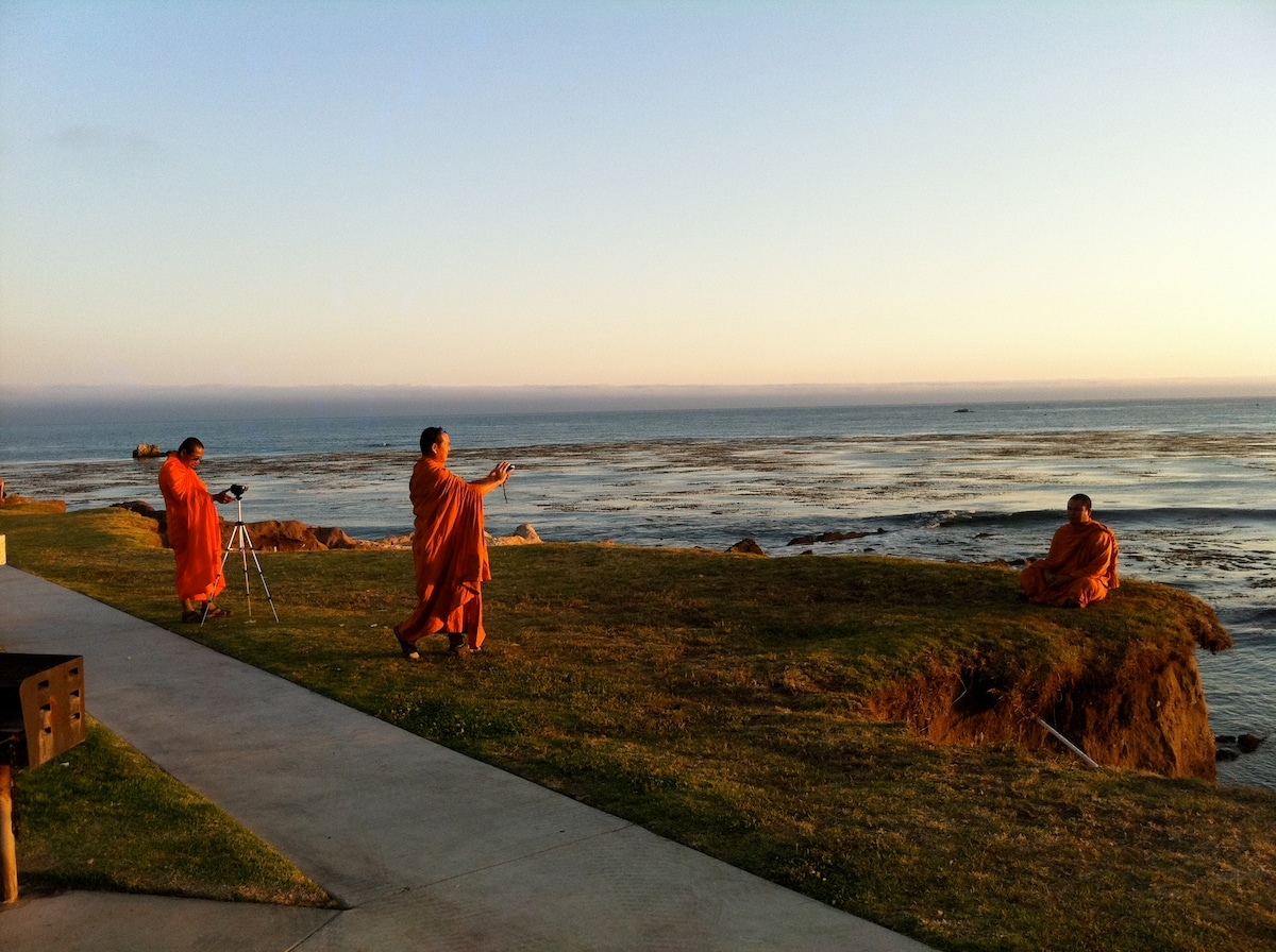 The beach is so cool in Shell BEach that the Monks use the background for their profile shots in Facebook!