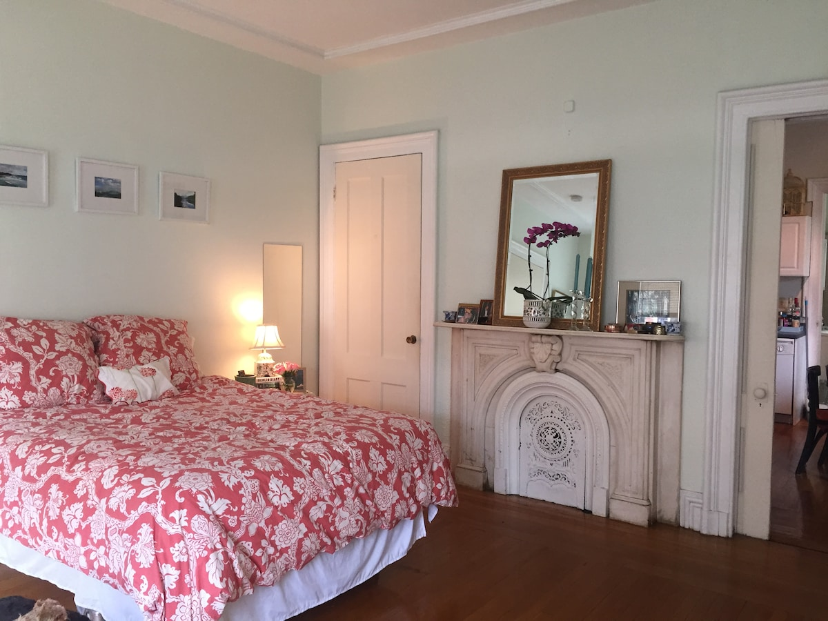 Charming Apt in Victorian, EastRock