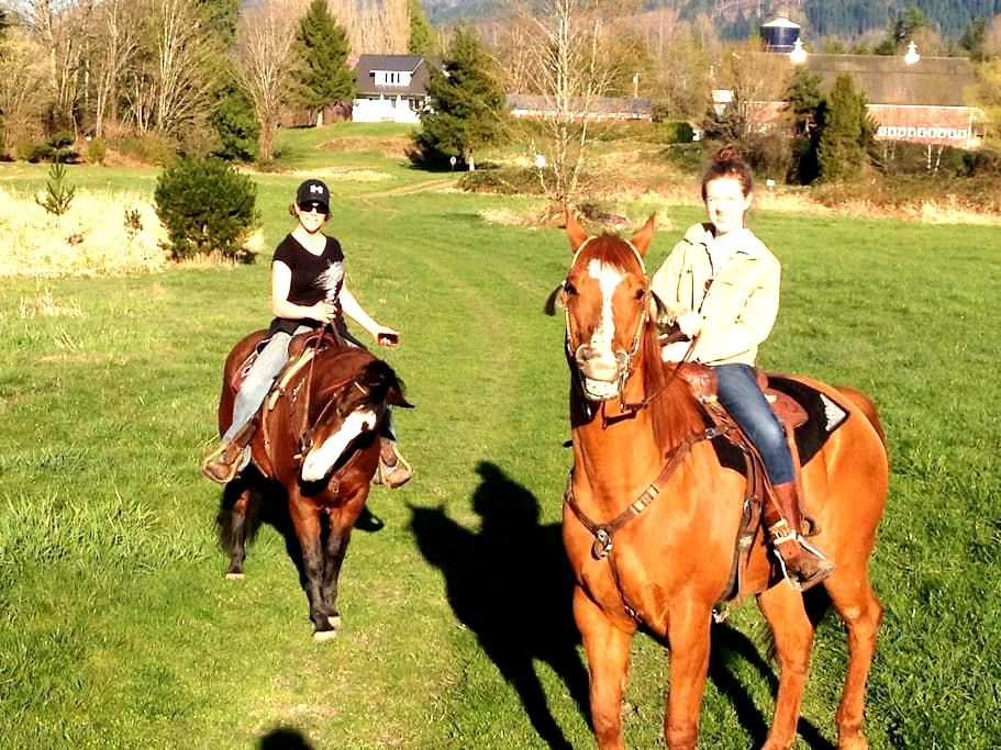 Room with queen bed on our gorgeous horse ranch. - Port Angeles - Haus
