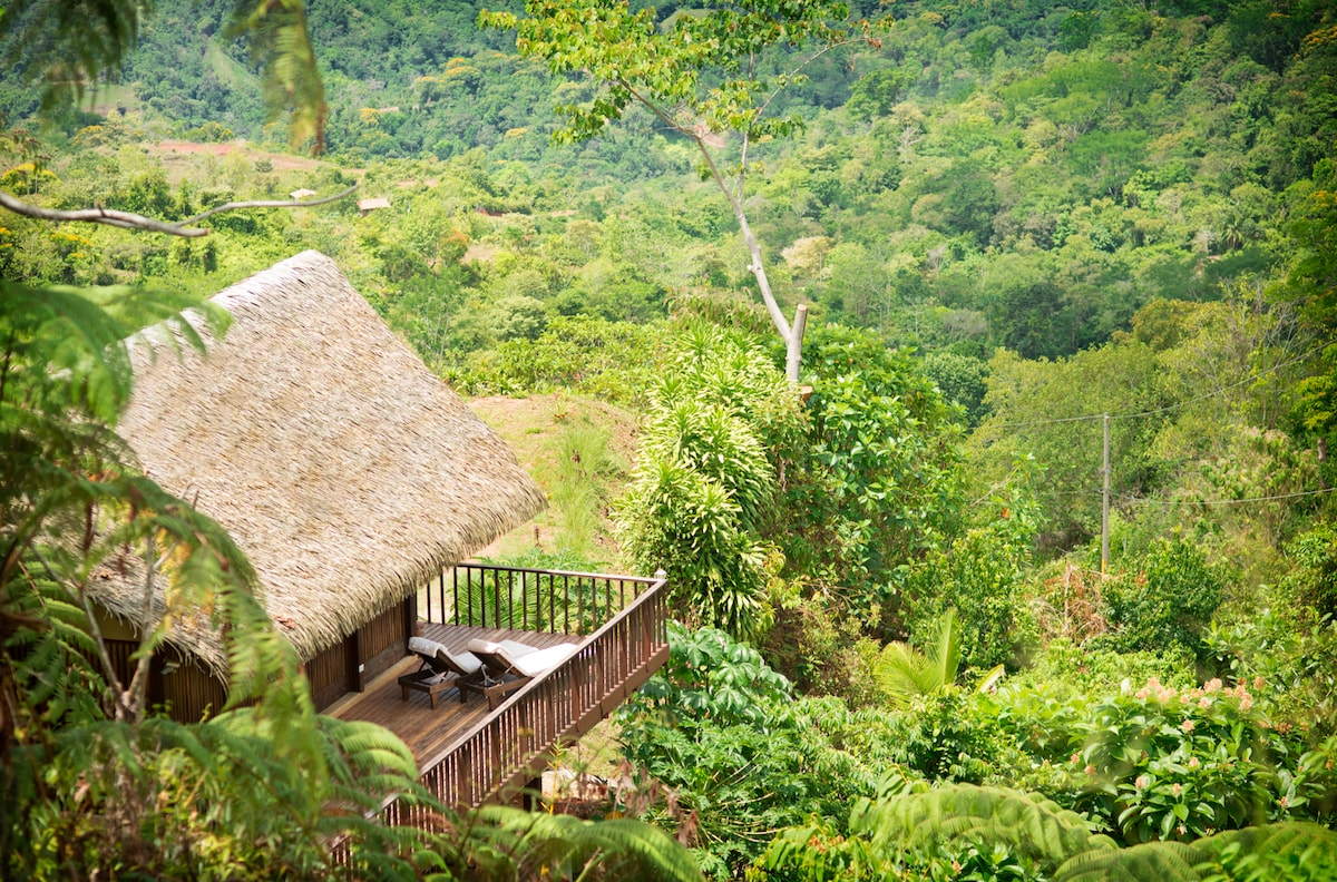 View of Pura Vida Ecolodge from the roadside above - showing the original 'palapa style' roof, the lush green valley, the flowing river Terraba and of course, the stunning Pacific ocean views... (Taken mid April 2015 around 11am).