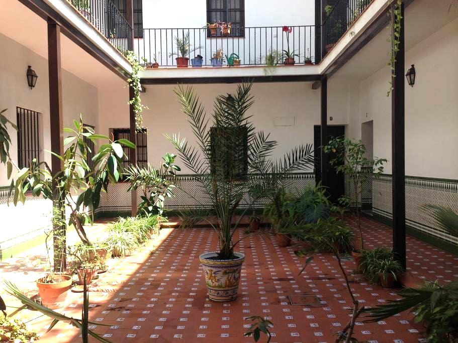 Apartamento céntrico con WIFI Y A/C - Siviglia - Condominio