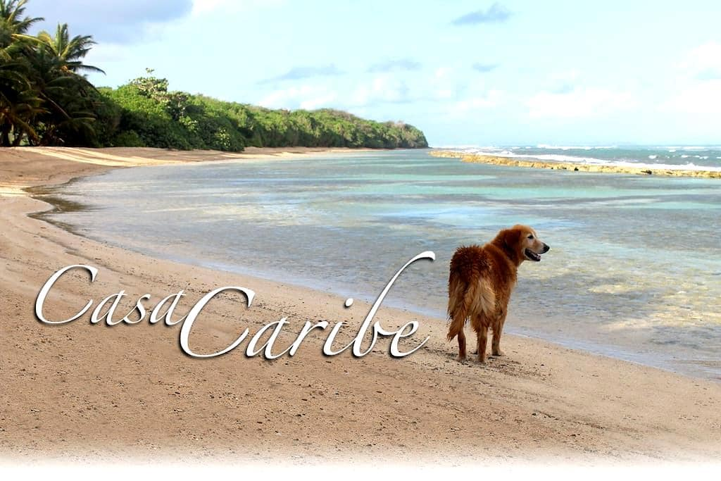 Casa de Caribe-only minutes to secluded beaches... - Santa Maria - Hus