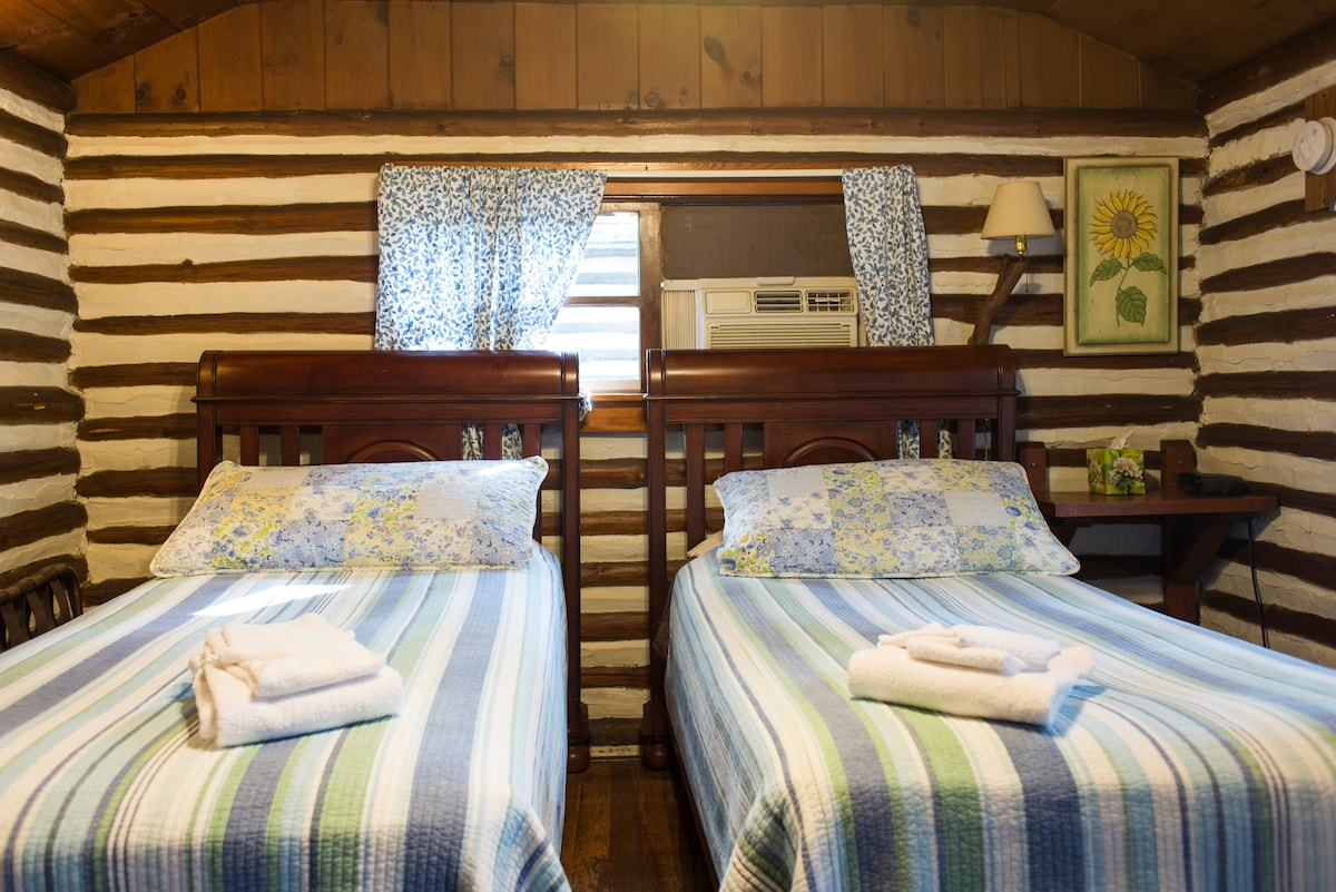 Two comfy twin beds