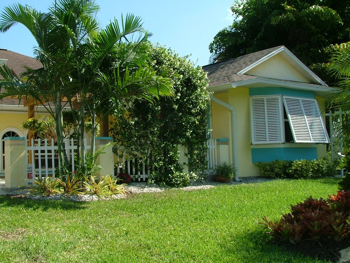 Palm trees and front lawn and garden