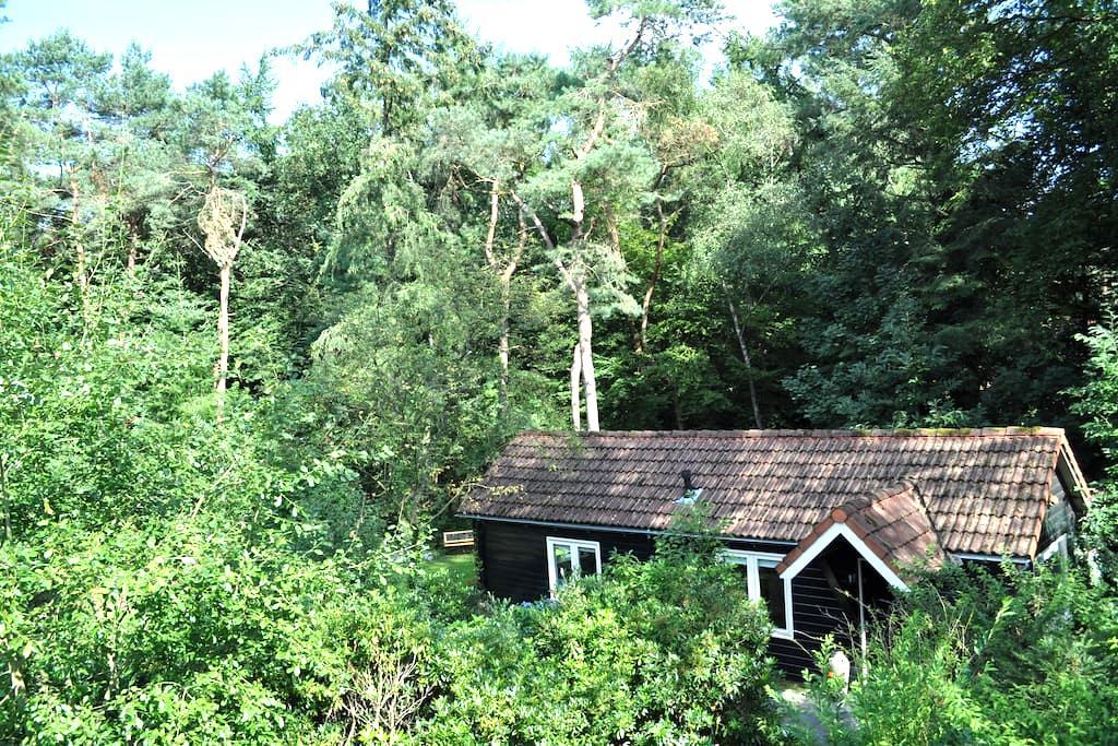Romantisch huisje midden in bos - Emst