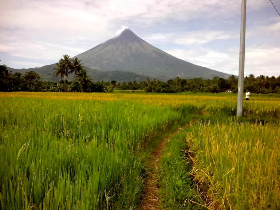 Tabaco city Mayon family friendly cabin/cottage - Tabaco City - 통나무집