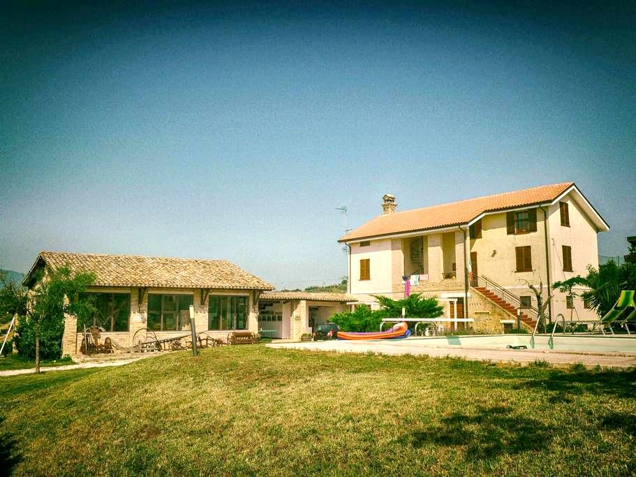 Relax among the vines - Ginestra - Controguerra - Appartement