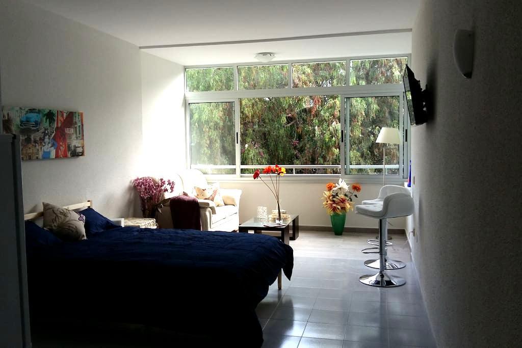 Charming Studio near Park - Puerto de la Cruz