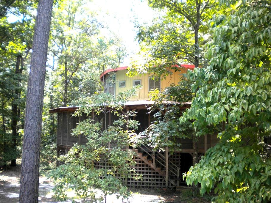 Treehouse in the Woods - Bethune - Treehouse